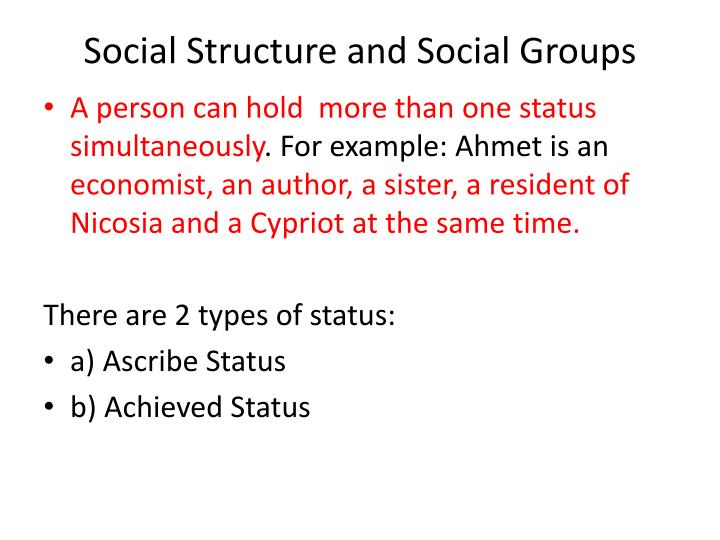 Social structure and social groups2