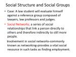 social structure and social groups21