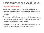 social structure and social groups23