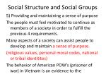 social structure and social groups29