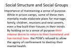 social structure and social groups30