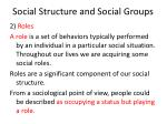 social structure and social groups6