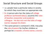 social structure and social groups7