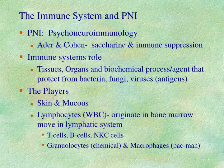 The Immune System and PNI