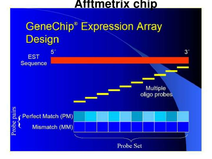 Afftmetrix chip