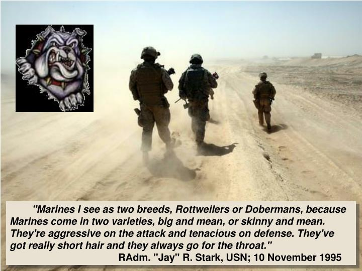 """Marines I see as two breeds,"