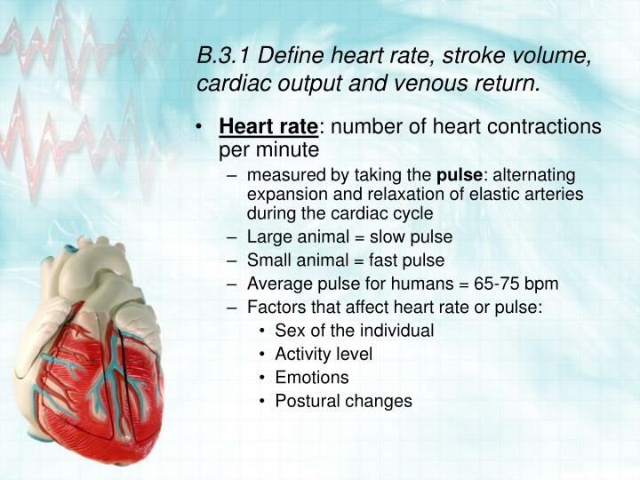 B 3 1 define heart rate stroke volume cardiac output and venous return