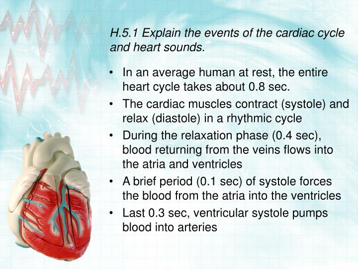 H.5.1 Explain the events of the cardiac cycle and heart sounds.
