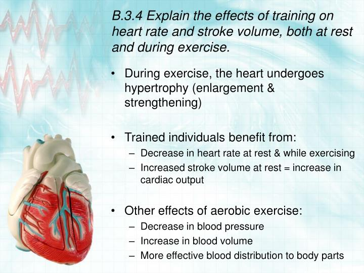 B.3.4 Explain the effects of training on heart rate and stroke volume, both at rest and during exercise.