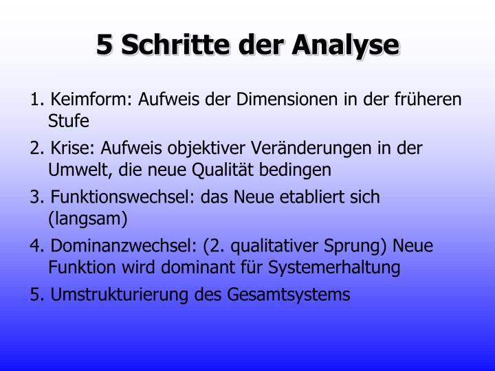 5 Schritte der Analyse
