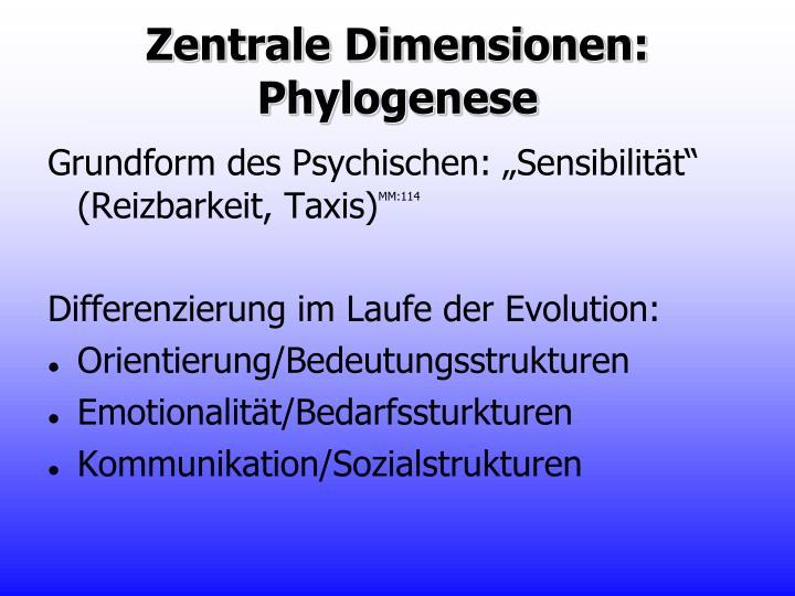 Zentrale Dimensionen: Phylogenese