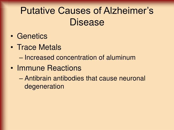 Putative Causes of Alzheimer's Disease
