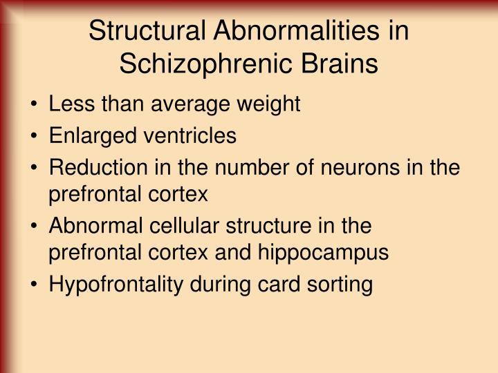 Structural Abnormalities in Schizophrenic Brains
