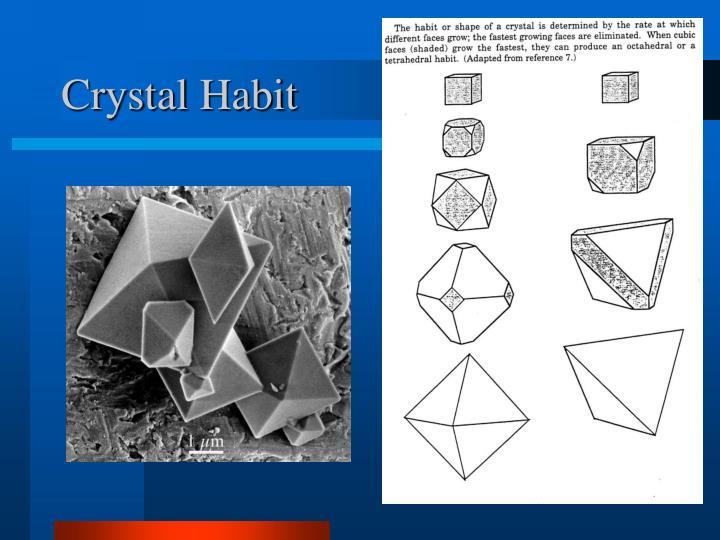 Crystal Habit