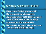 grizzly general store