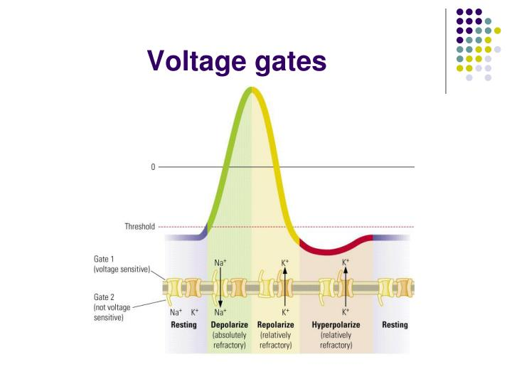 Voltage gates