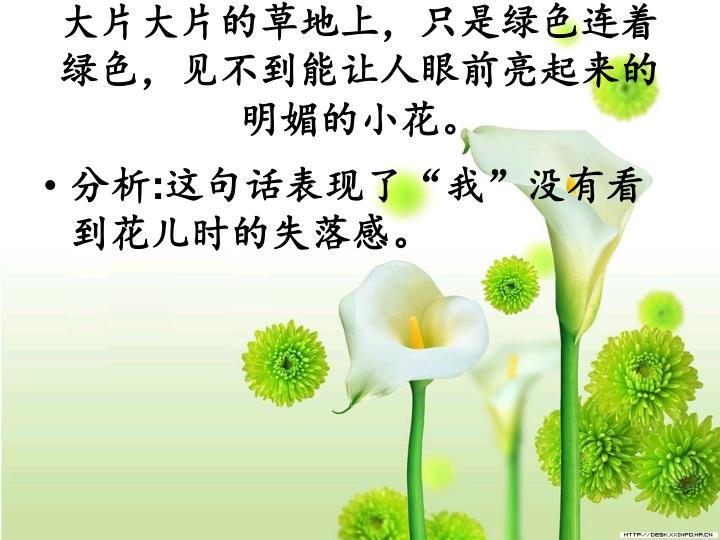 大片大片的草地上,只是绿色连着绿色,见不到能让人眼前亮起来的明媚的小花。