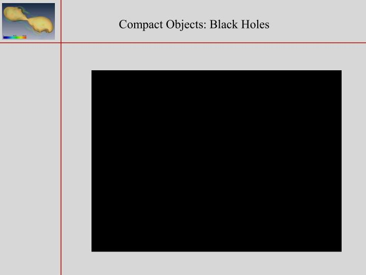 Compact Objects: Black Holes