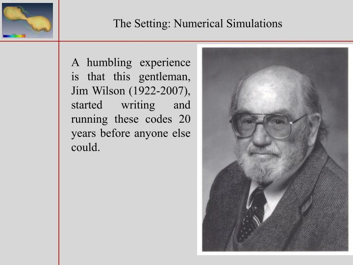 The Setting: Numerical Simulations