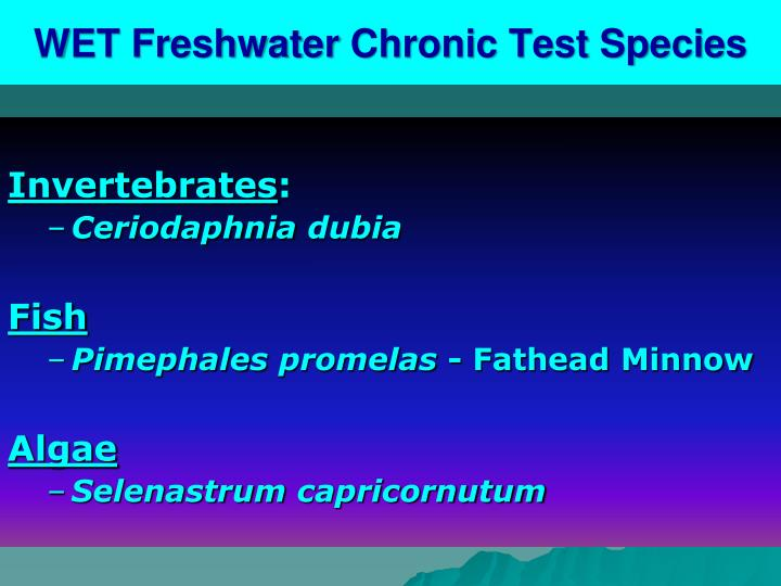 WET Freshwater