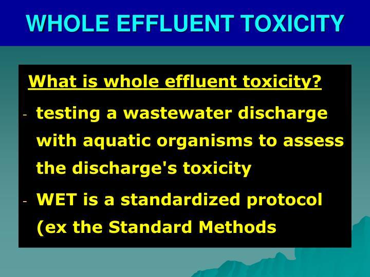 WHOLE EFFLUENT TOXICITY