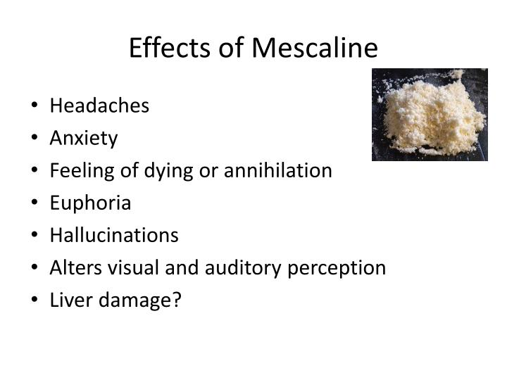 Effects of Mescaline