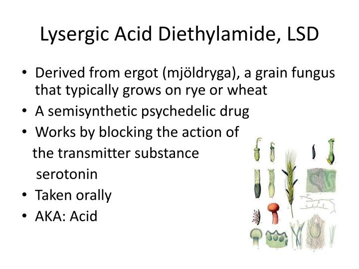 Lysergic Acid Diethylamide, LSD