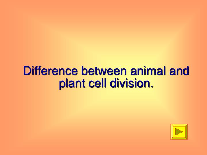 Difference between animal and plant cell division.