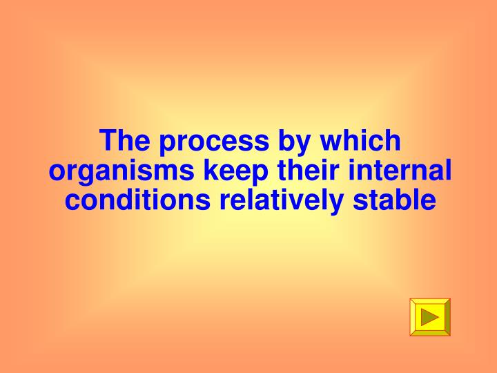 The process by which organisms keep their internal conditions relatively stable