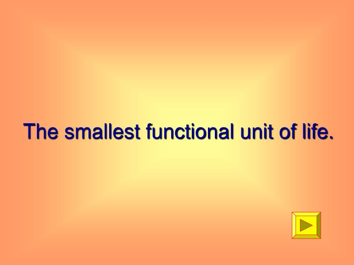 The smallest functional unit of life.