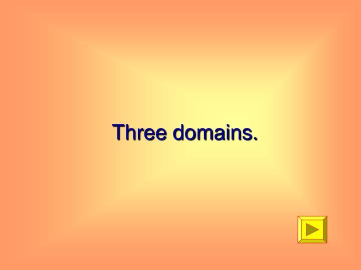 Three domains.