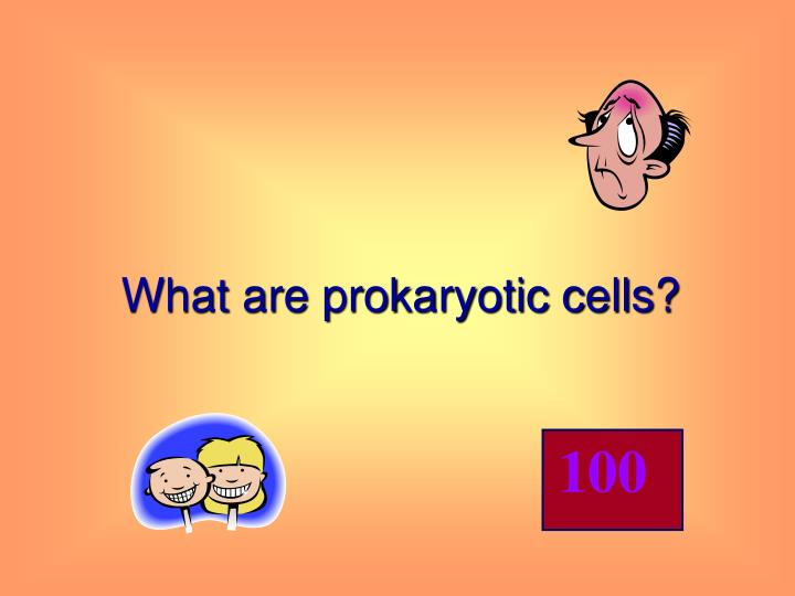 What are prokaryotic cells?