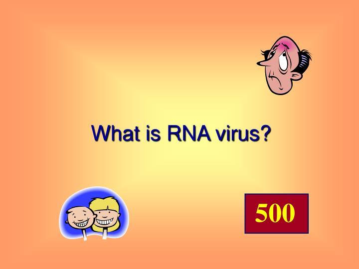 What is RNA virus?
