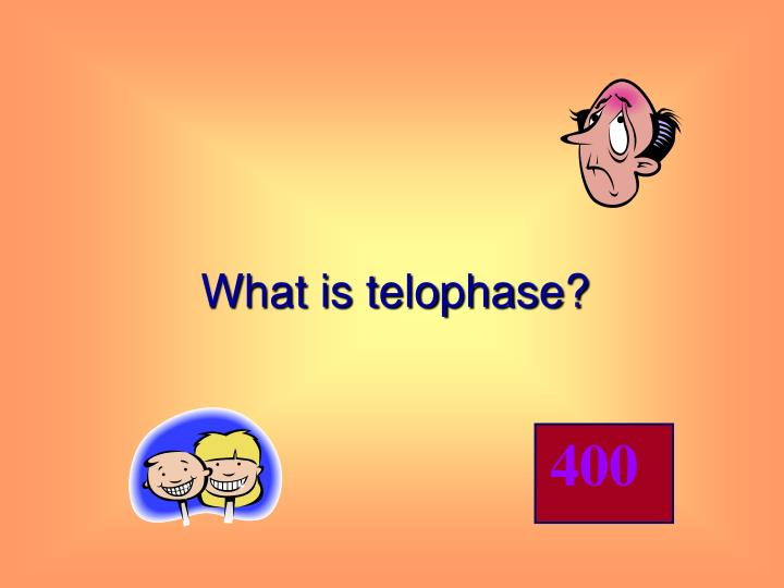 What is telophase?