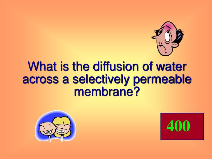 What is the diffusion of water across a selectively permeable membrane?