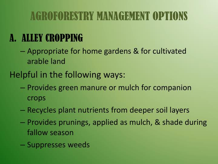 AGROFORESTRY MANAGEMENT OPTIONS
