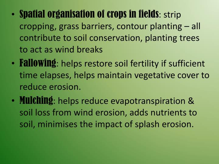 Spatial organisation of crops in fields