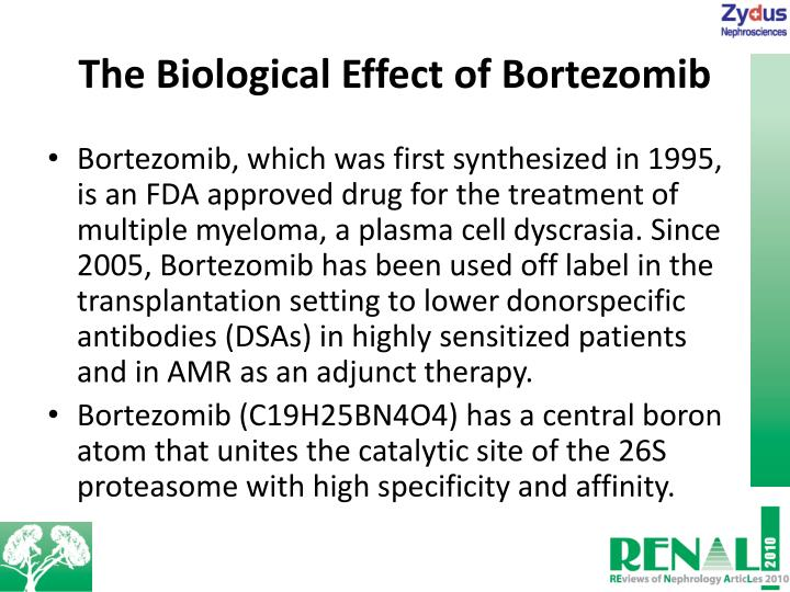 The Biological Effect of