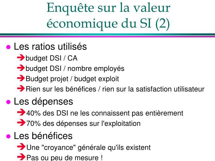 Enquête sur la valeur économique du SI (2)