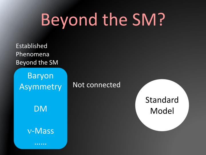 Beyond the SM?