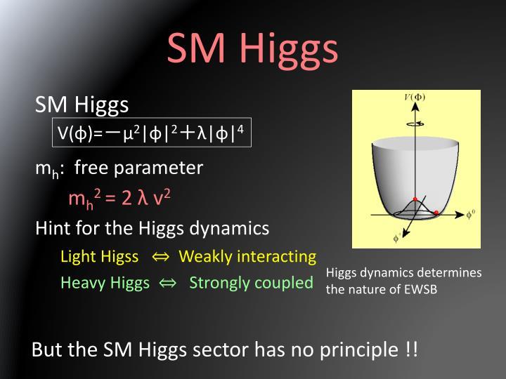 SM Higgs