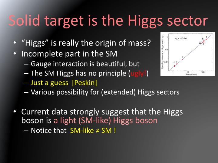 Solid target is the Higgs sector