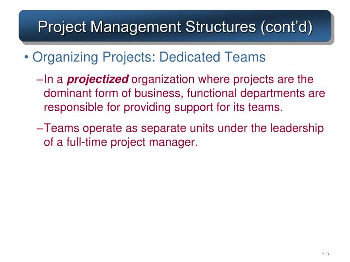 Project Management Structures (cont'd)