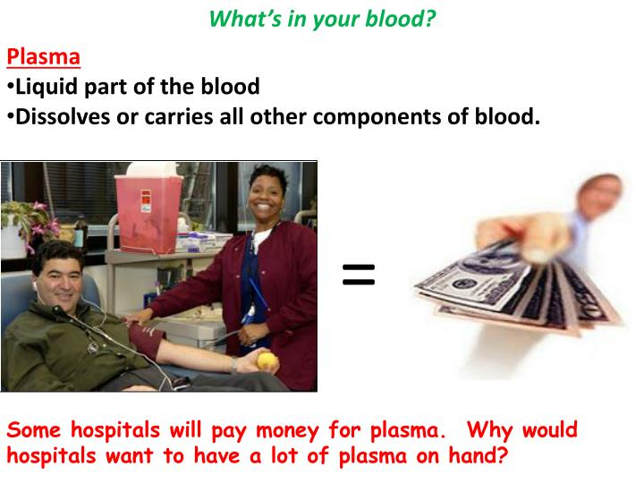 What's in your blood?