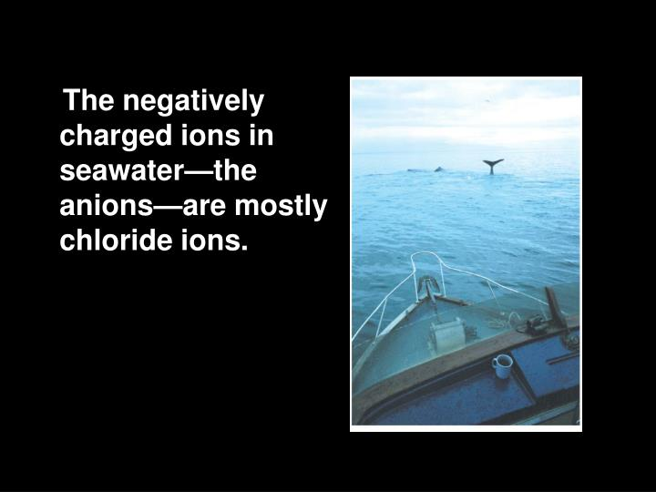 The negatively charged ions in seawater—the anions—are mostly chloride ions.