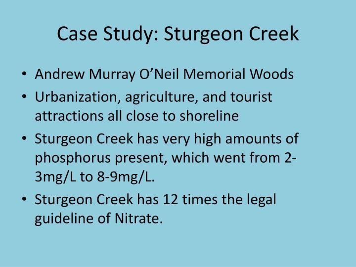 Case Study: Sturgeon Creek