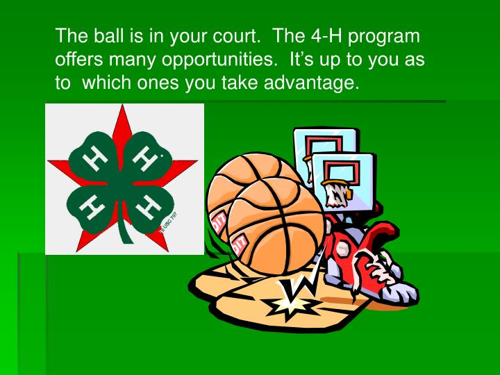 The ball is in your court.  The 4-H program offers many opportunities.  It's up to you as to  which ones you take advantage.