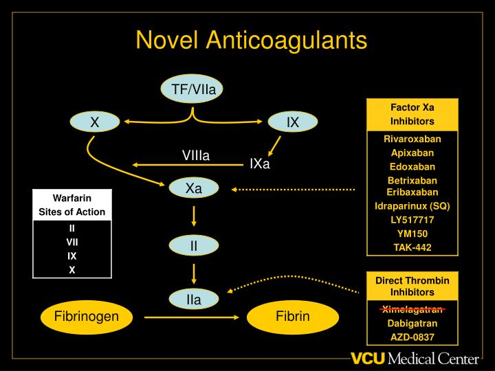 Novel Anticoagulants