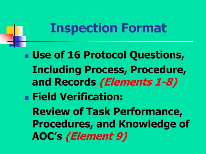 Inspection Format