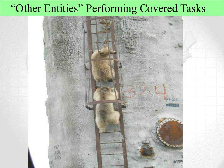 """Other Entities"" Performing Covered Tasks"